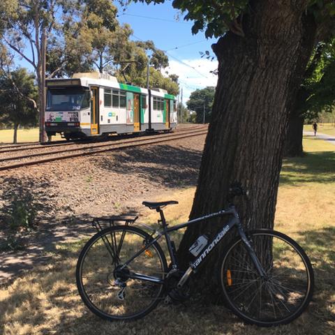 Bike and Tram 55